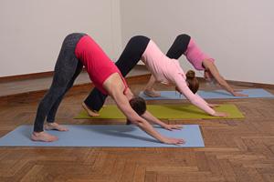 Easy flow Yin Yoga | Yoga Awareness Arnhem Noord