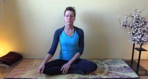 Video: Mini Yin Yogales Hartopeners